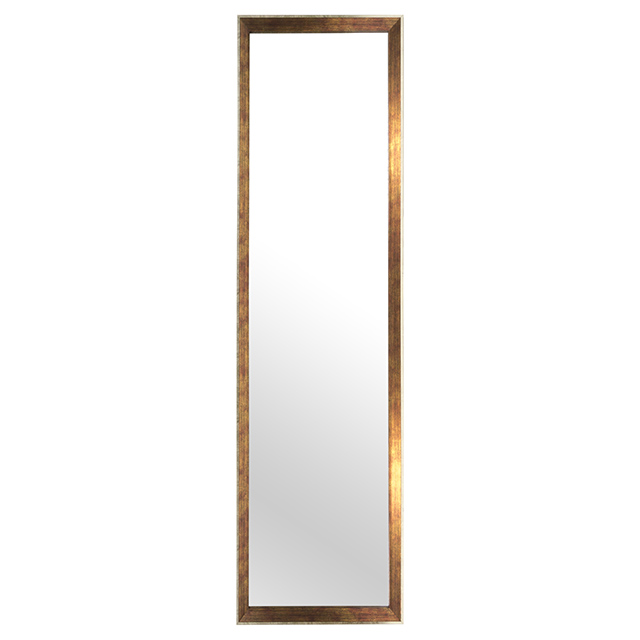 13 x 49 Inch Door Mirror, Oak with Silver Trim